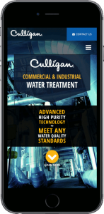 Culligan Industrial Water Web Development